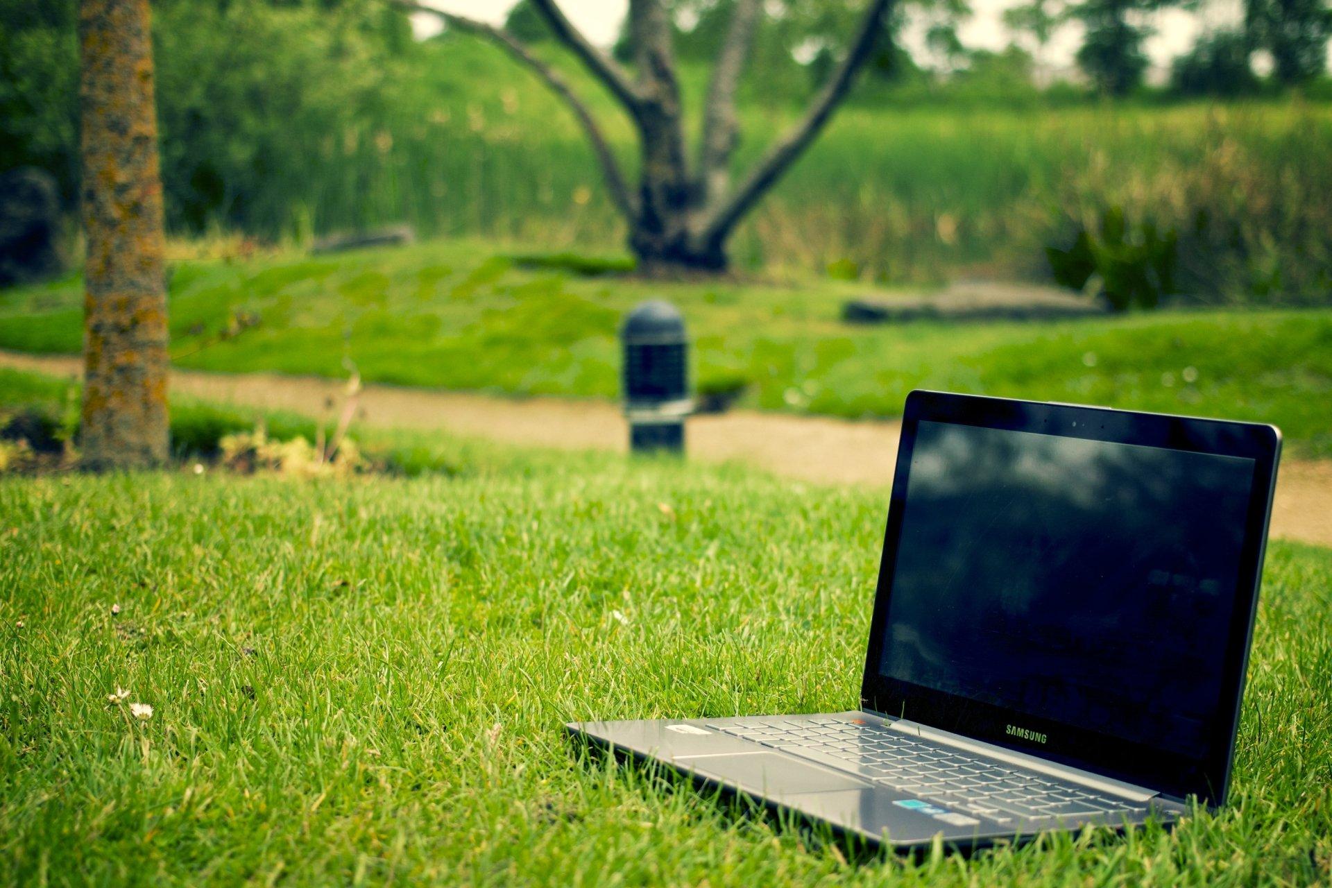 技术 - Notebook  草 公园 电脑 Laptop Samsung 壁纸