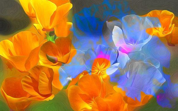 Artistic Flower Flowers Blue Flower Orange Flower HD Wallpaper | Background Image