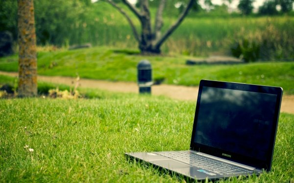 Technology Notebook Samsung Laptop Computer Park Grass HD Wallpaper | Background Image