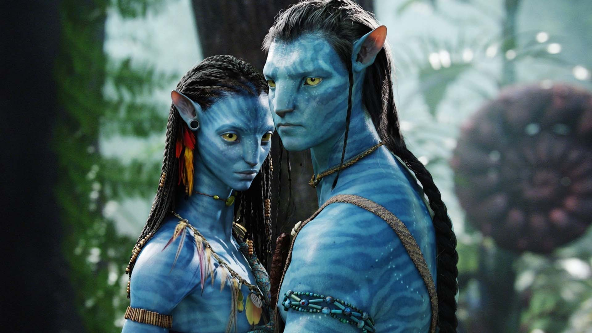 Avatar Hd Wallpaper Background Image 1920x1080 Id 674346 Wallpaper Abyss