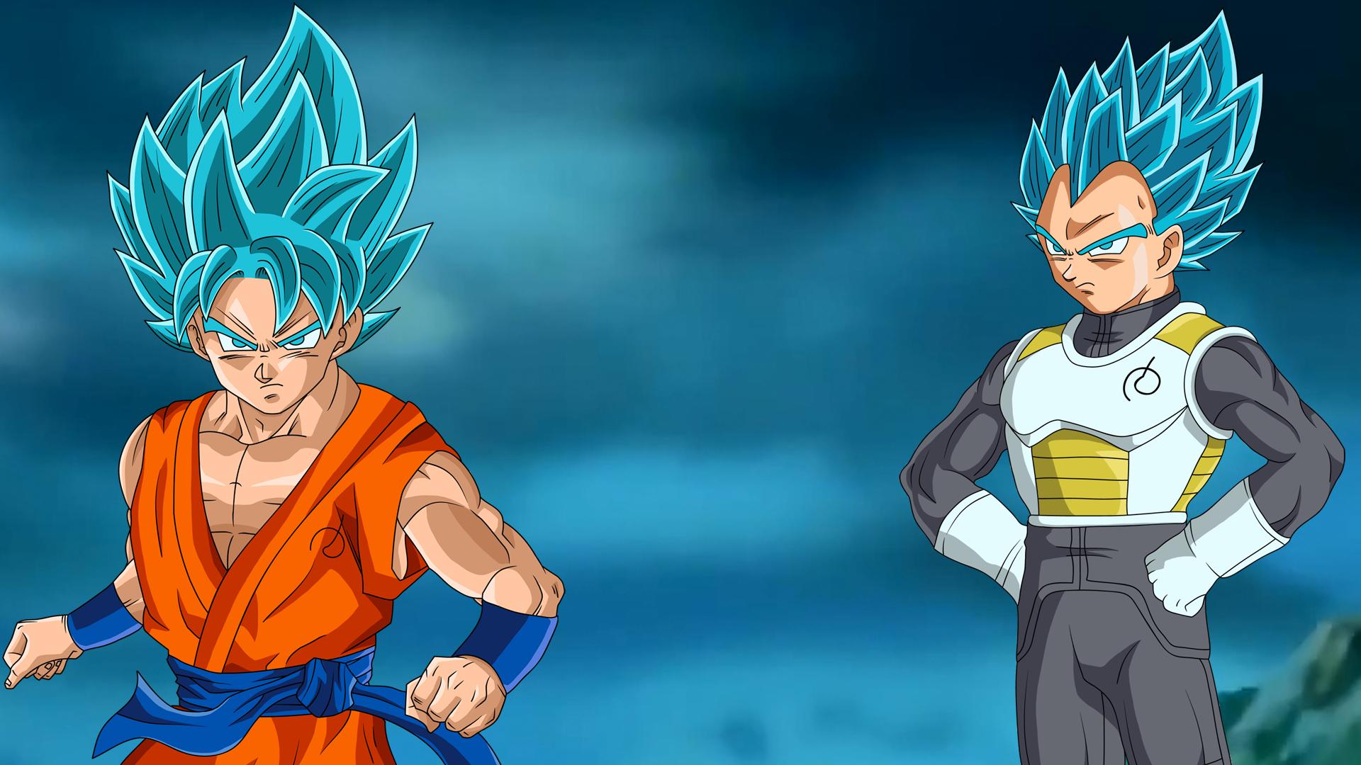 Goku And Vegeta Full Hd Fondo De Pantalla And Fondo De: SSGSS Goku & Vegeta Fondo De Pantalla HD