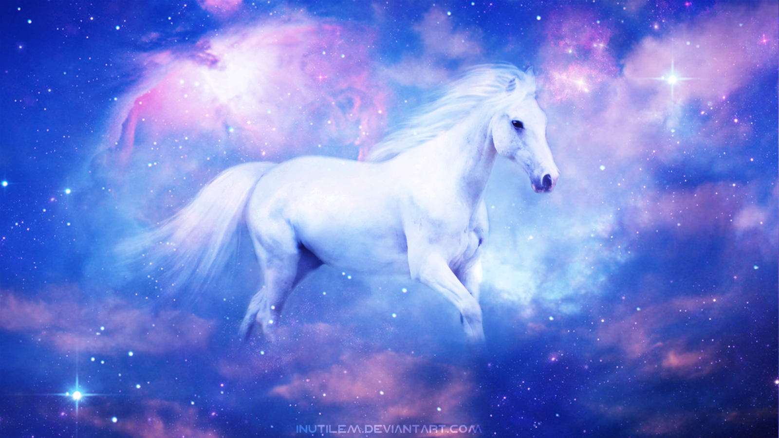 Equine Serenity Wallpaper And Background Image