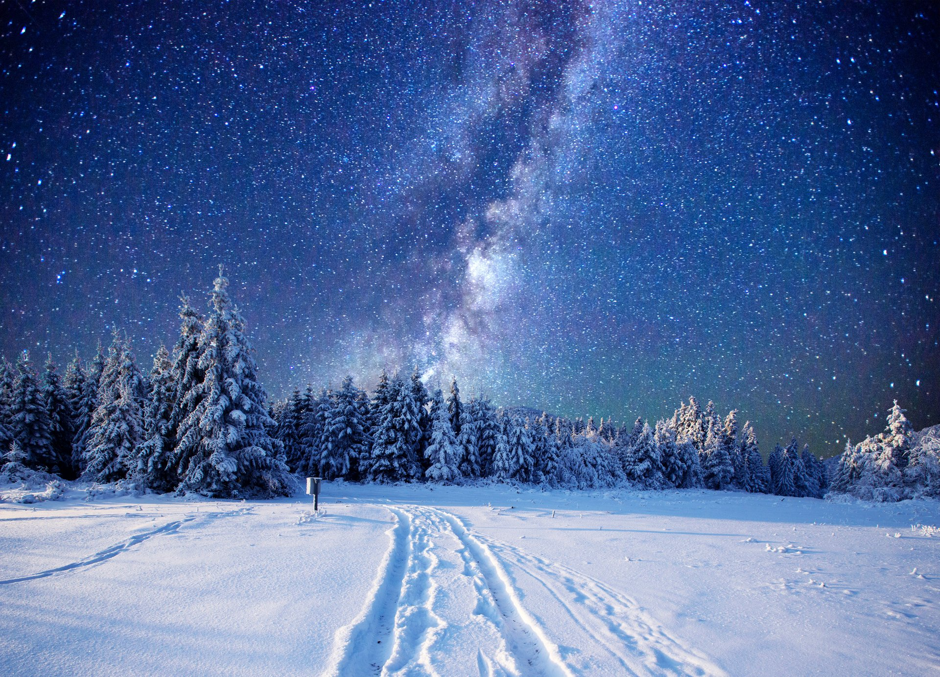 Sci Fi - Milky Way  Winter Forest Tree Snow Sky Stars Nature Wallpaper