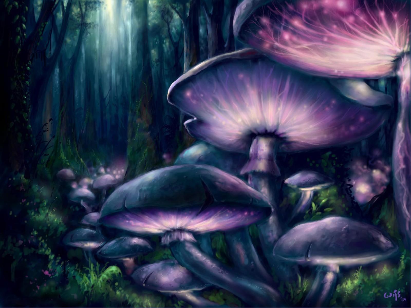 enchanted mushroom wallpaper - photo #22