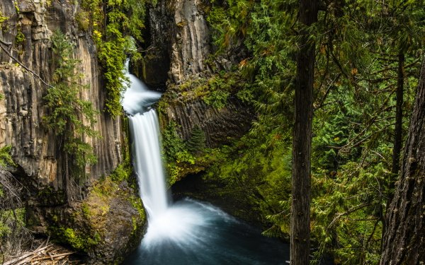 Earth Waterfall Waterfalls Oregon Toketee Falls Forest Green Rock Tree HD Wallpaper   Background Image