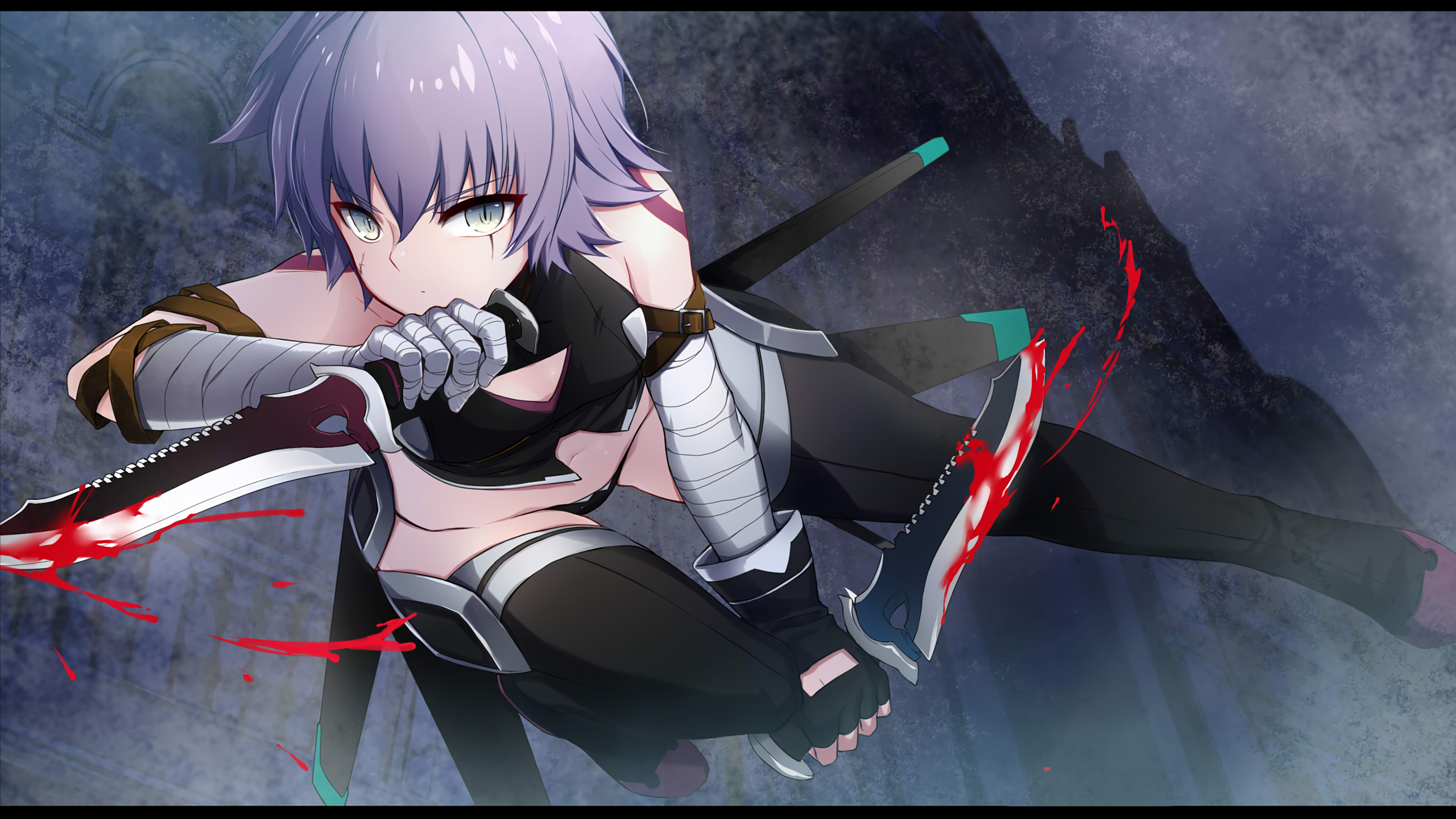 14 Assassin Of Black Fate Apocrypha Hd Wallpapers Background