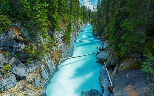 Earth River Forest Tree Yoho National Park Canada Nature Rock HD Wallpaper   Background Image
