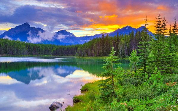 Earth Lake Lakes Sunset Tree Forest Mountain Nature Reflection Banff National Park Canada HD Wallpaper | Background Image