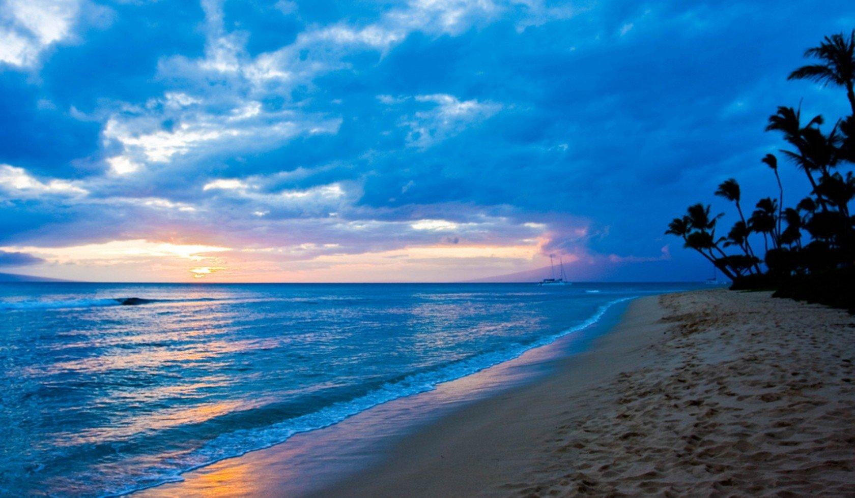 Earth - Sunset  Earth Sky Blue Cloud Tropical Beach Palm Tree Ocean Horizon Wallpaper