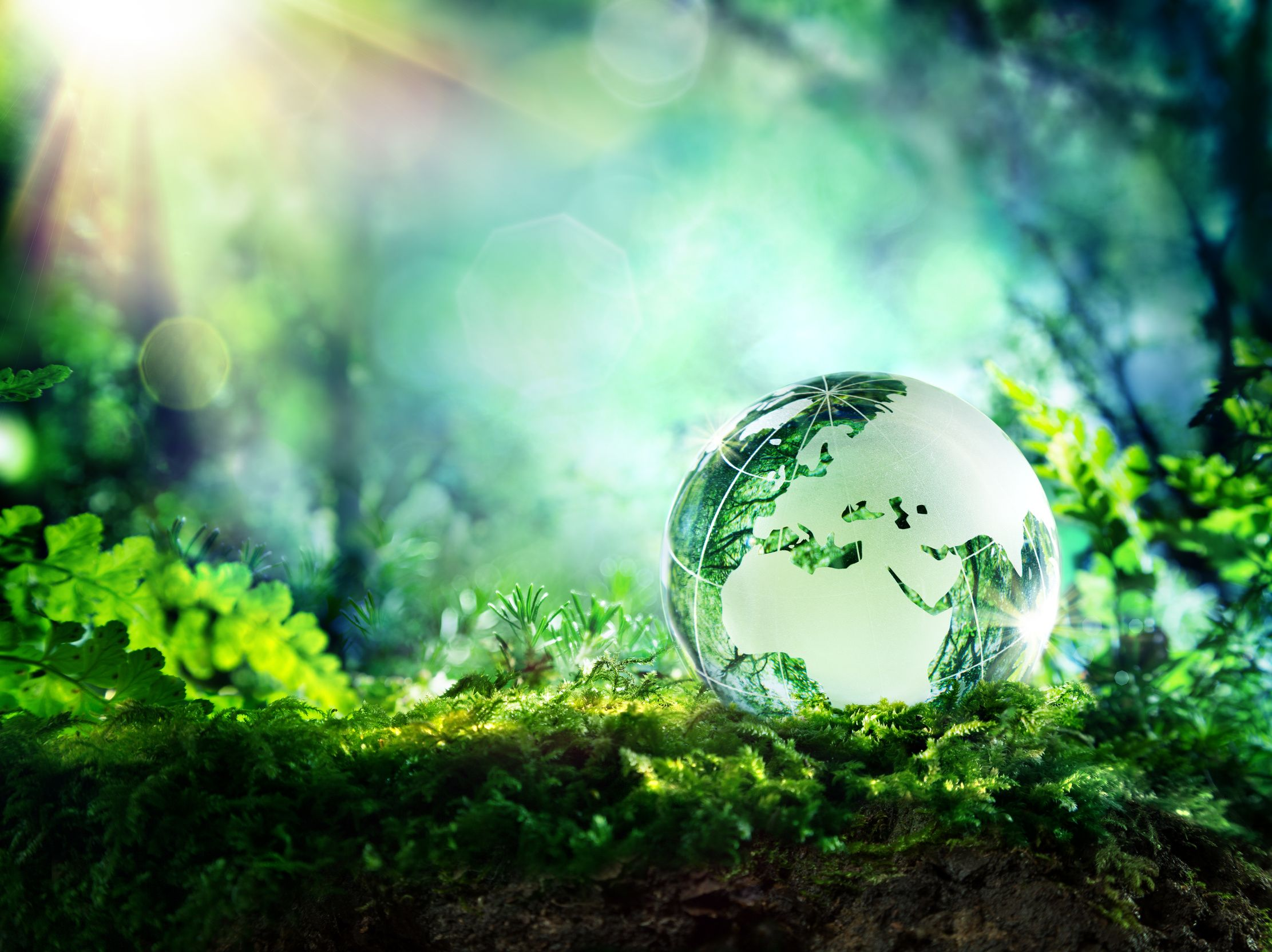 Earth Day Hd Wallpaper Background Image 2223x1664 Id 695514