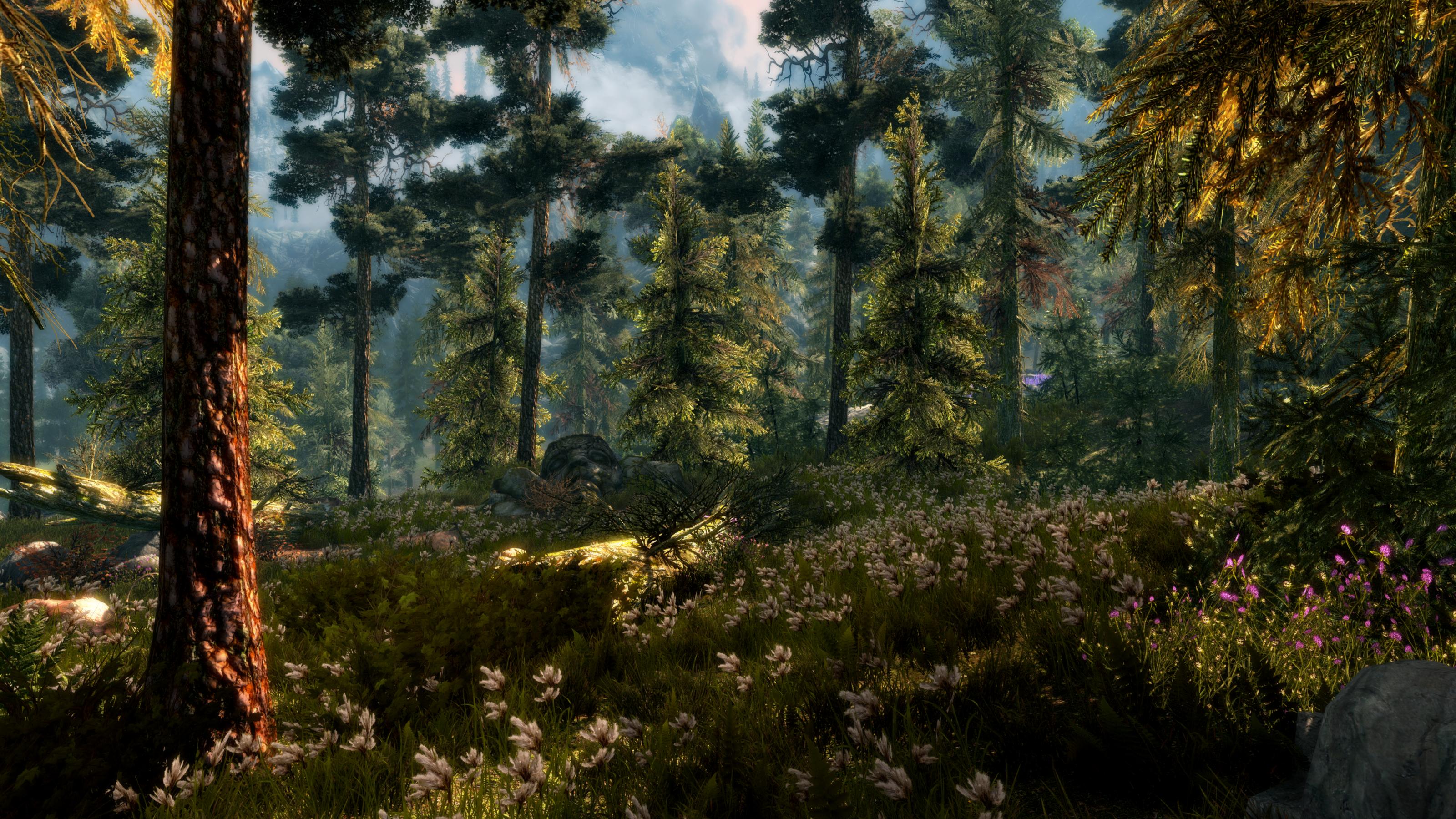 video game the elder scrolls v skyrim earth forest spring tree green flower wallpaper