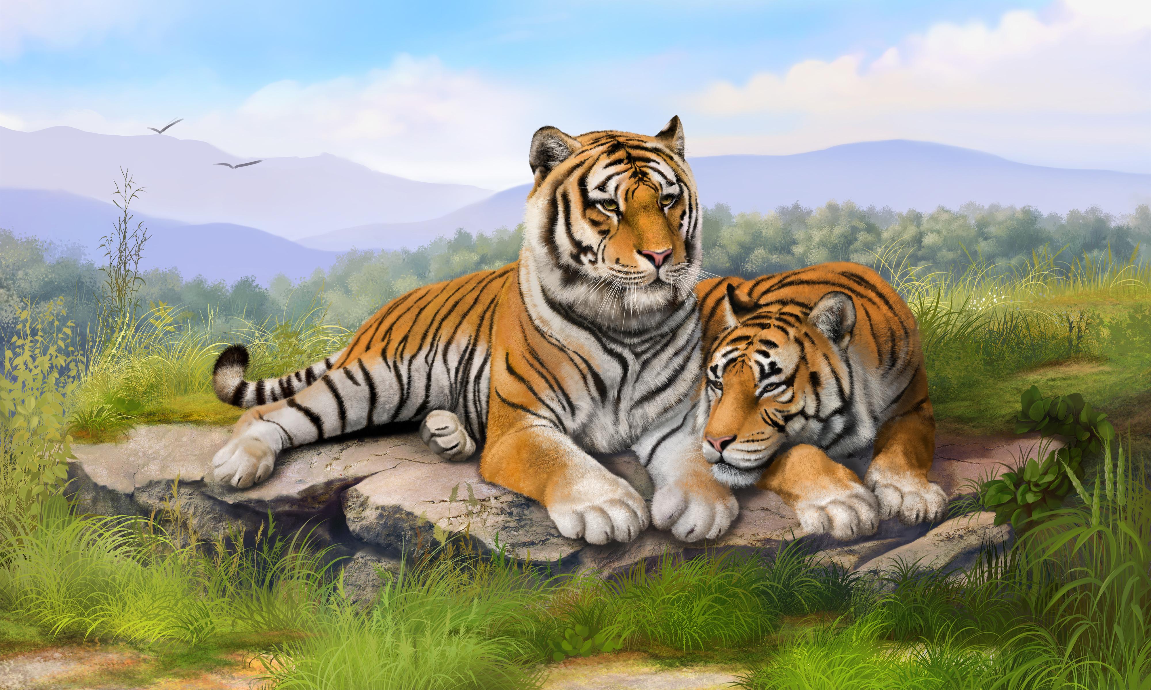 老虎图片 老虎高清壁纸 动物壁纸-第1张