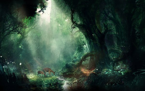HD Wallpaper | Background Image ID:709157