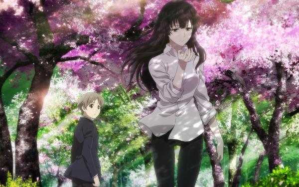 Anime Beautiful Bones: Sakurako's Investigation Sakurako Kujou HD Wallpaper   Background Image