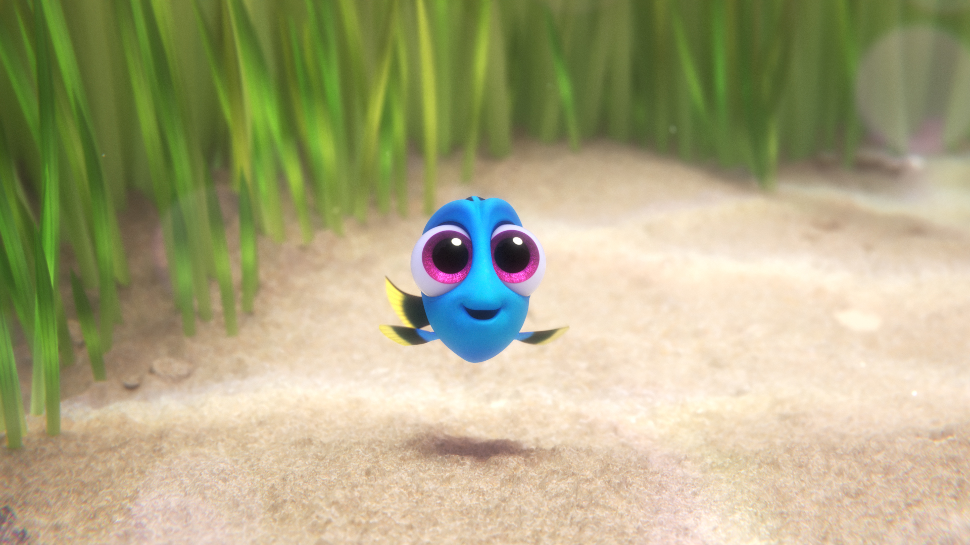 Finding Dory Wallpapers ID730895