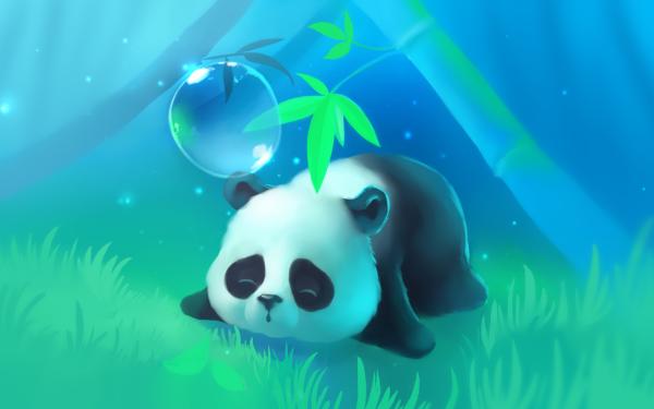 Animal Panda Artistic HD Wallpaper   Background Image