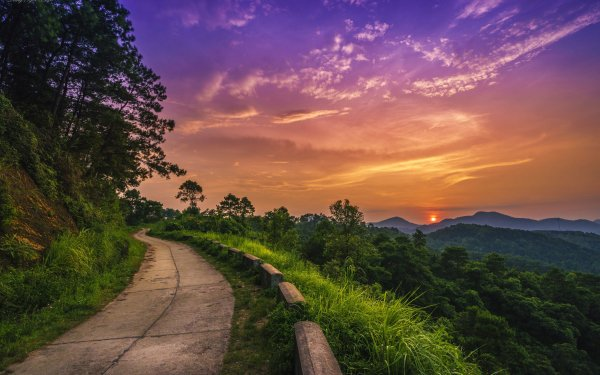 Man Made Road Forest Mountain Tree HD Wallpaper   Background Image