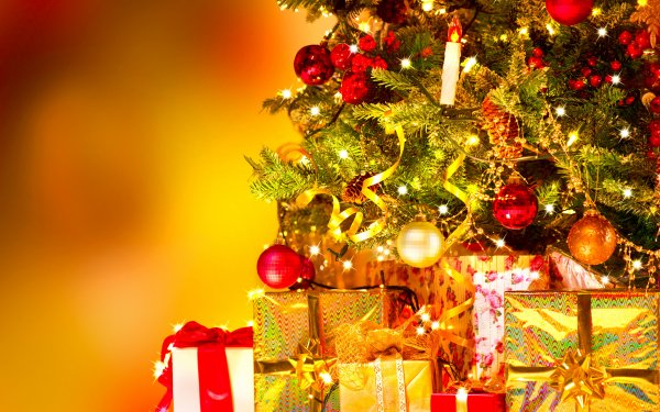 Holiday Christmas Gift Christmas Tree Golden HD Wallpaper | Background Image