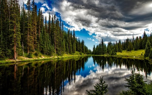 Earth Lake Lakes National Park Reflection Forest Tree Nature Cloud Colorado HD Wallpaper | Background Image