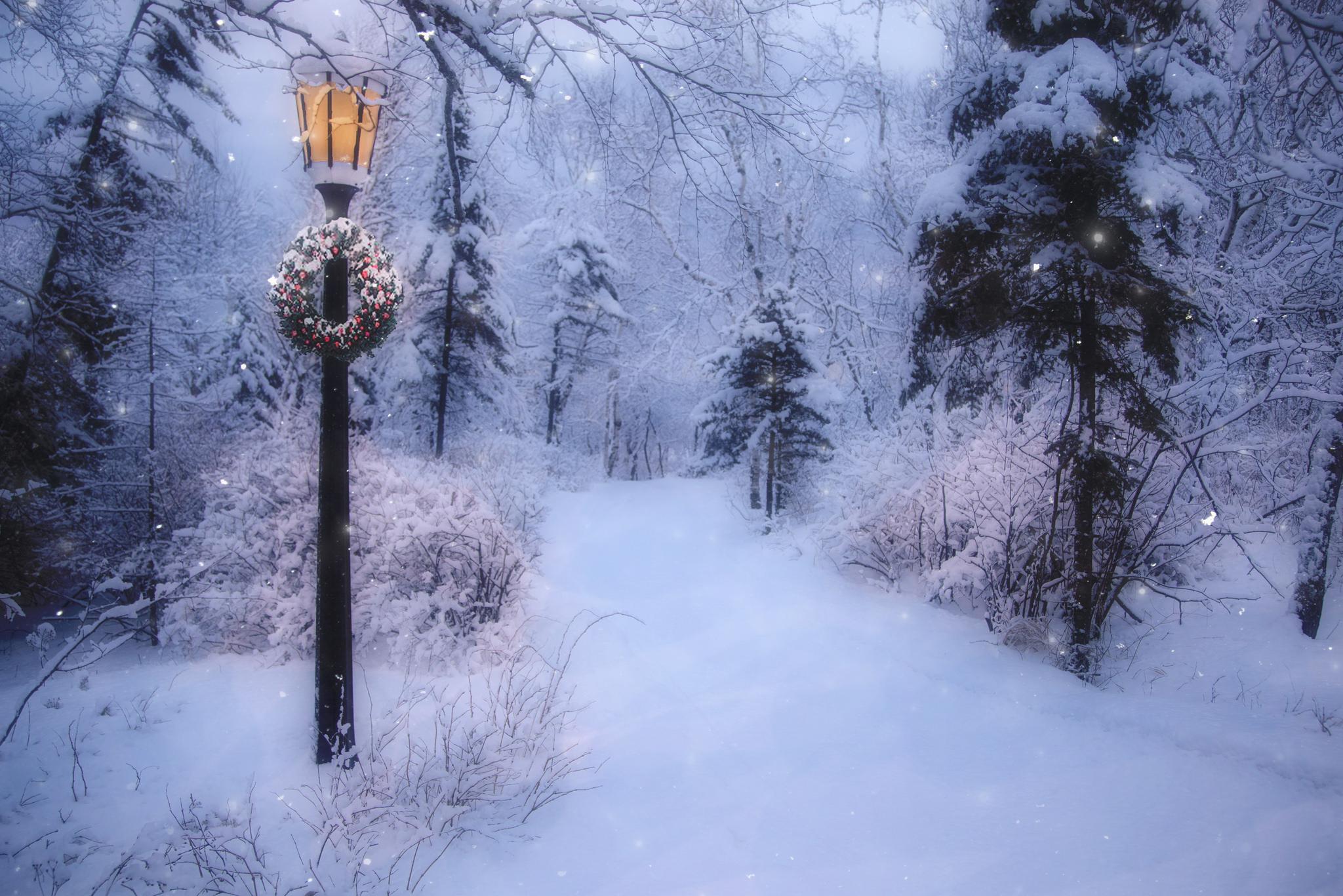 Snowy winter road at christmastime hd wallpaper for Immagini inverno sfondi