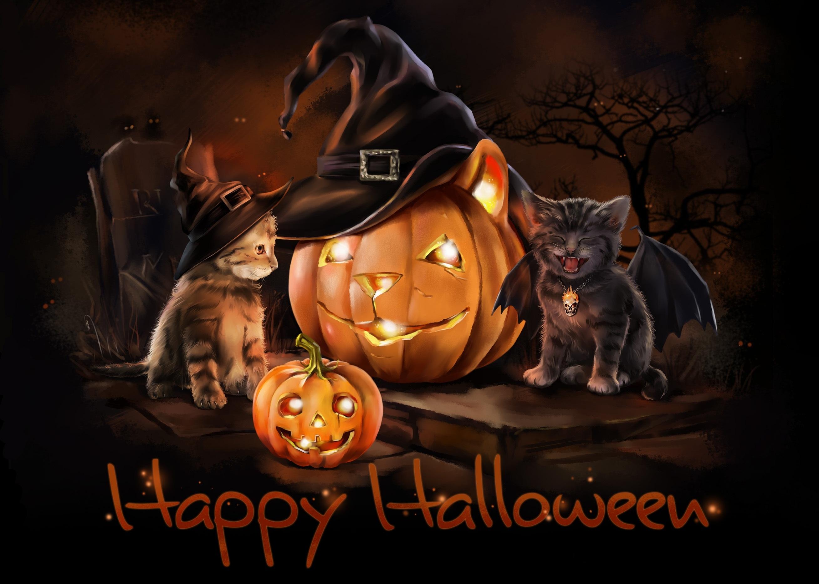 Simple Wallpaper Halloween Kitten - 755573  Best Photo Reference_223488.jpg