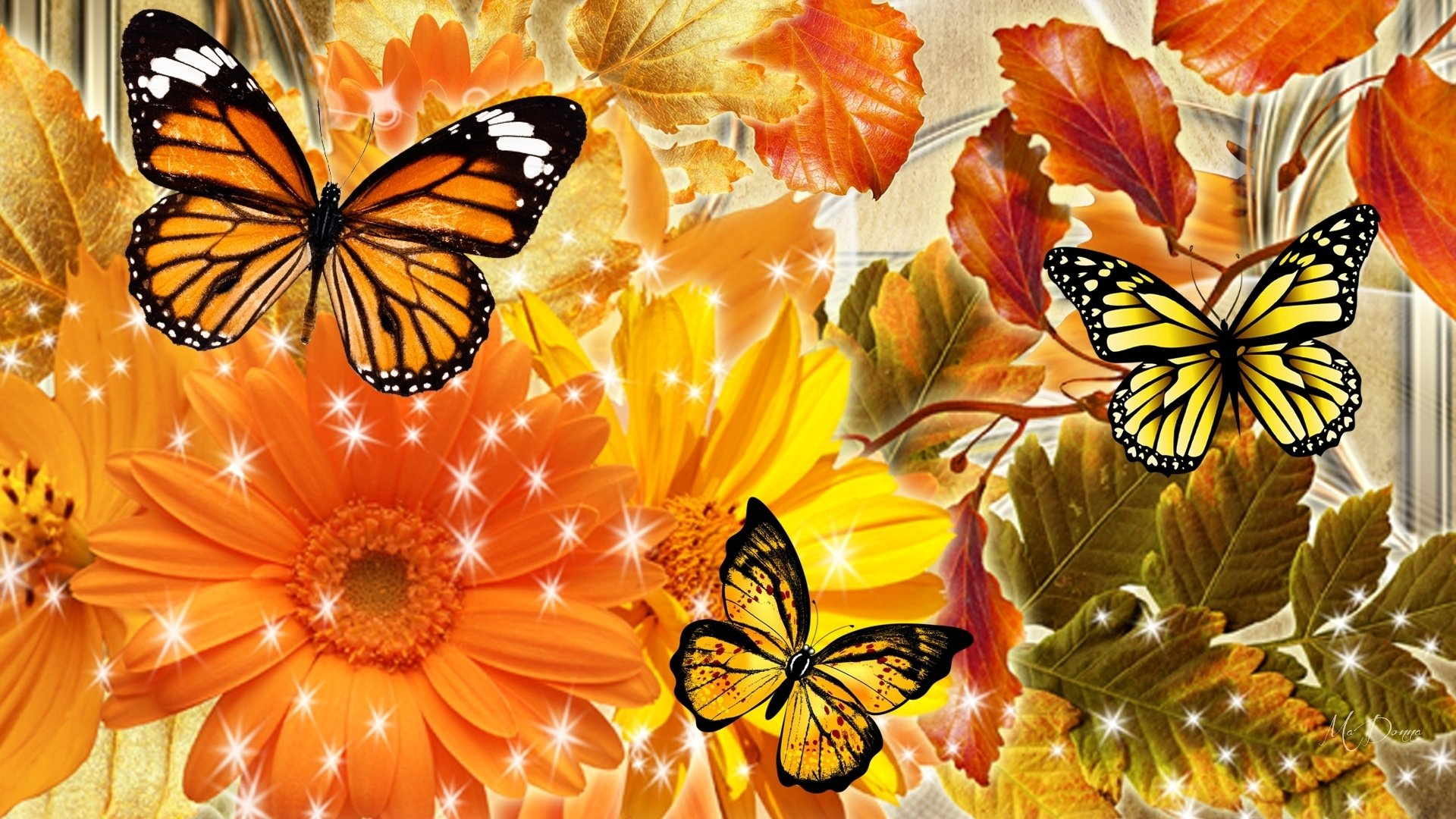 Aninimal Book: Autumn Flowers and Butterflies HD Wallpaper   Background ...