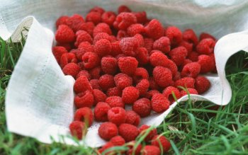 Alimento - Raspberry Wallpapers and Backgrounds ID : 76807