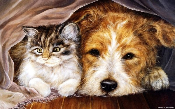 Artistic Painting Dog Cat Cuddle HD Wallpaper | Background Image
