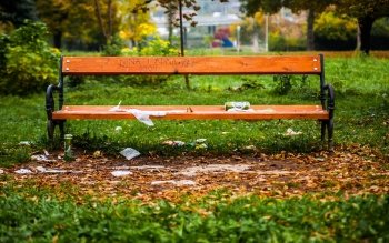 393 Bench Hd Wallpapers Background Images Wallpaper Abyss Page 12