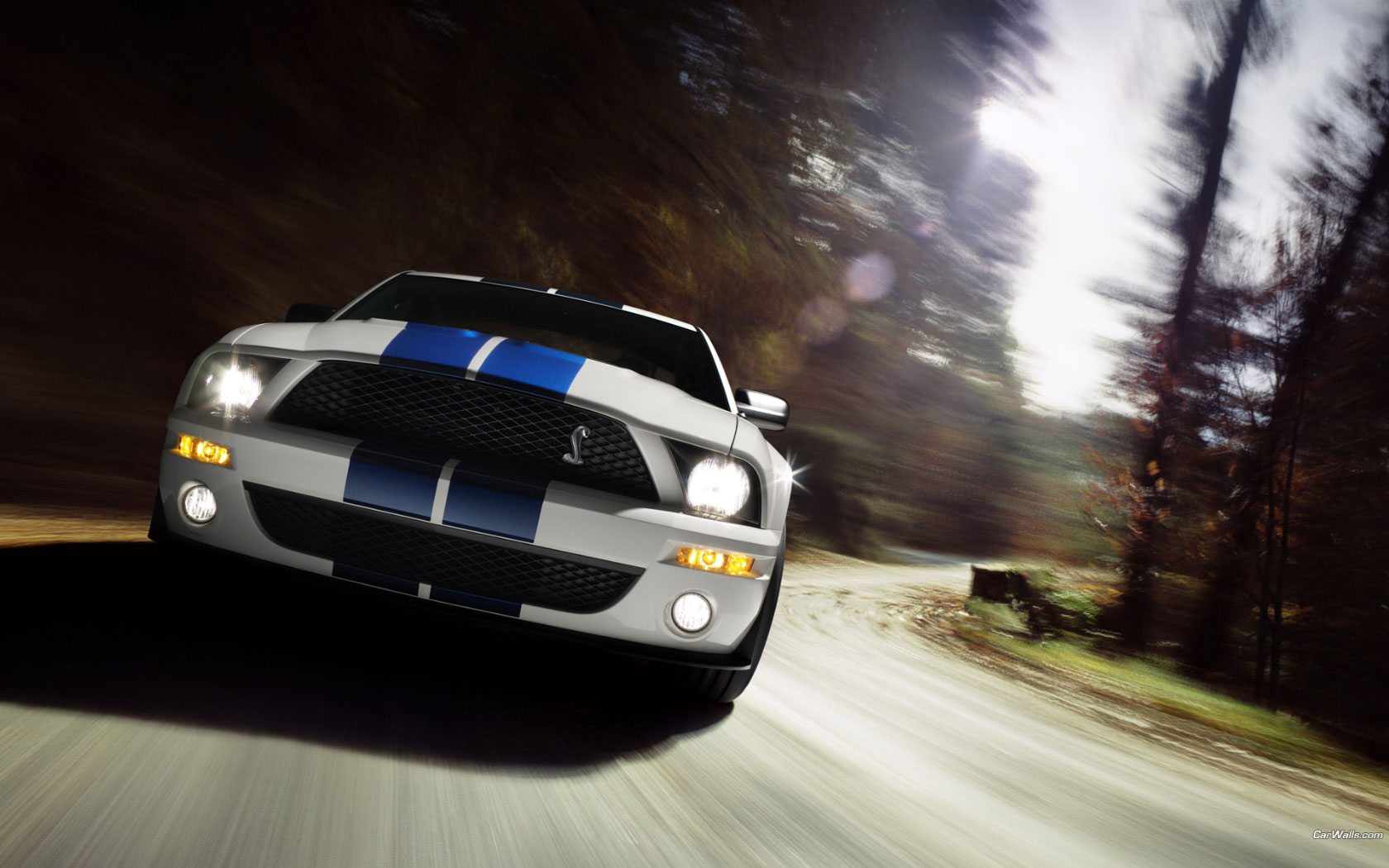 Vehículos - Ford Mustang  Fondo de Pantalla