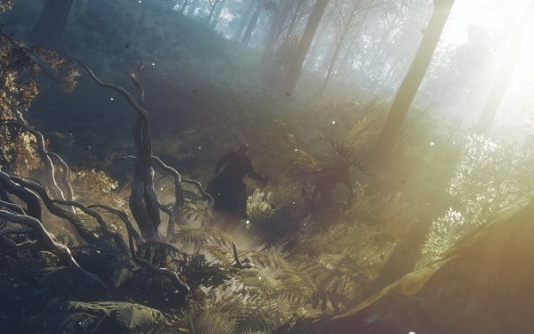 Video Game The Witcher 3: Wild Hunt The Witcher Duel HD Wallpaper | Background Image