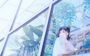 HD Wallpaper | Background ID:790697