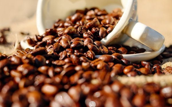 Food Coffee Coffee Beans Cup Mug HD Wallpaper | Background Image