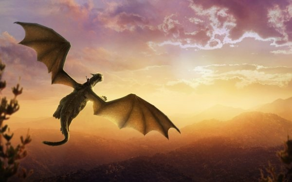 Movie Pete's Dragon (2016) Elliot HD Wallpaper | Background Image
