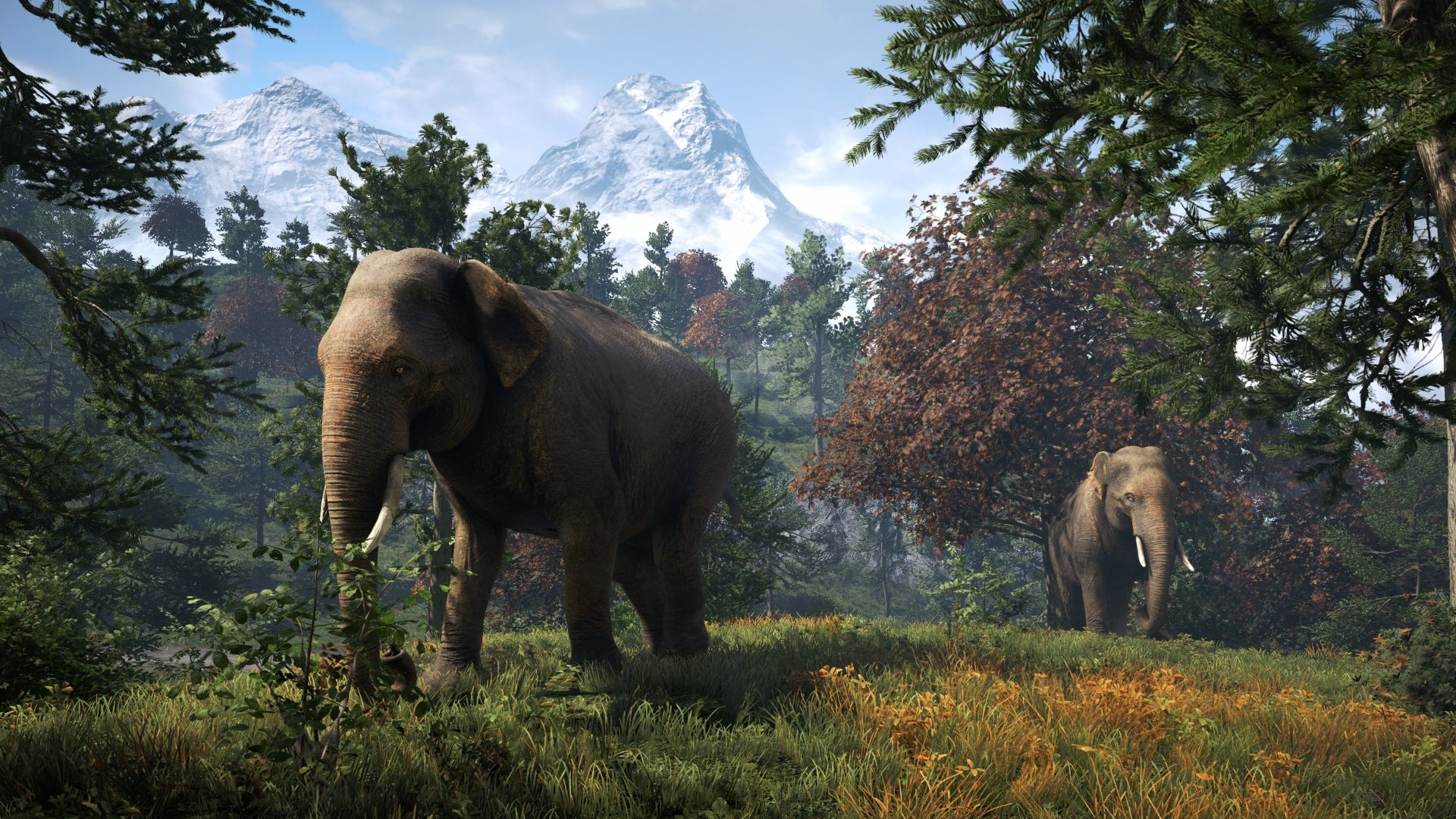 Far Cry 4 Wallpaper Elephant: Far Cry 4 4k Ultra HD Wallpaper