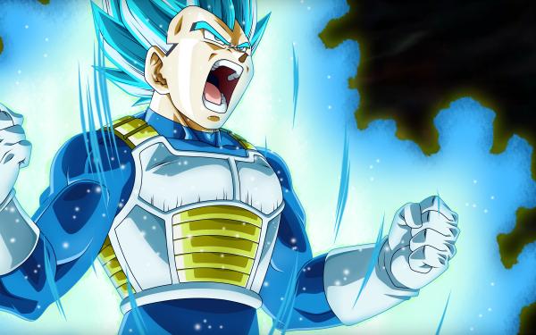 Anime Dragon Ball Super Dragon Ball Vegeta HD Wallpaper   Background Image