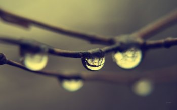 Jorden - Water Drop Wallpapers and Backgrounds ID : 82245