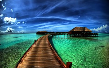 Fotografie - Tropical Wallpapers and Backgrounds ID : 82317