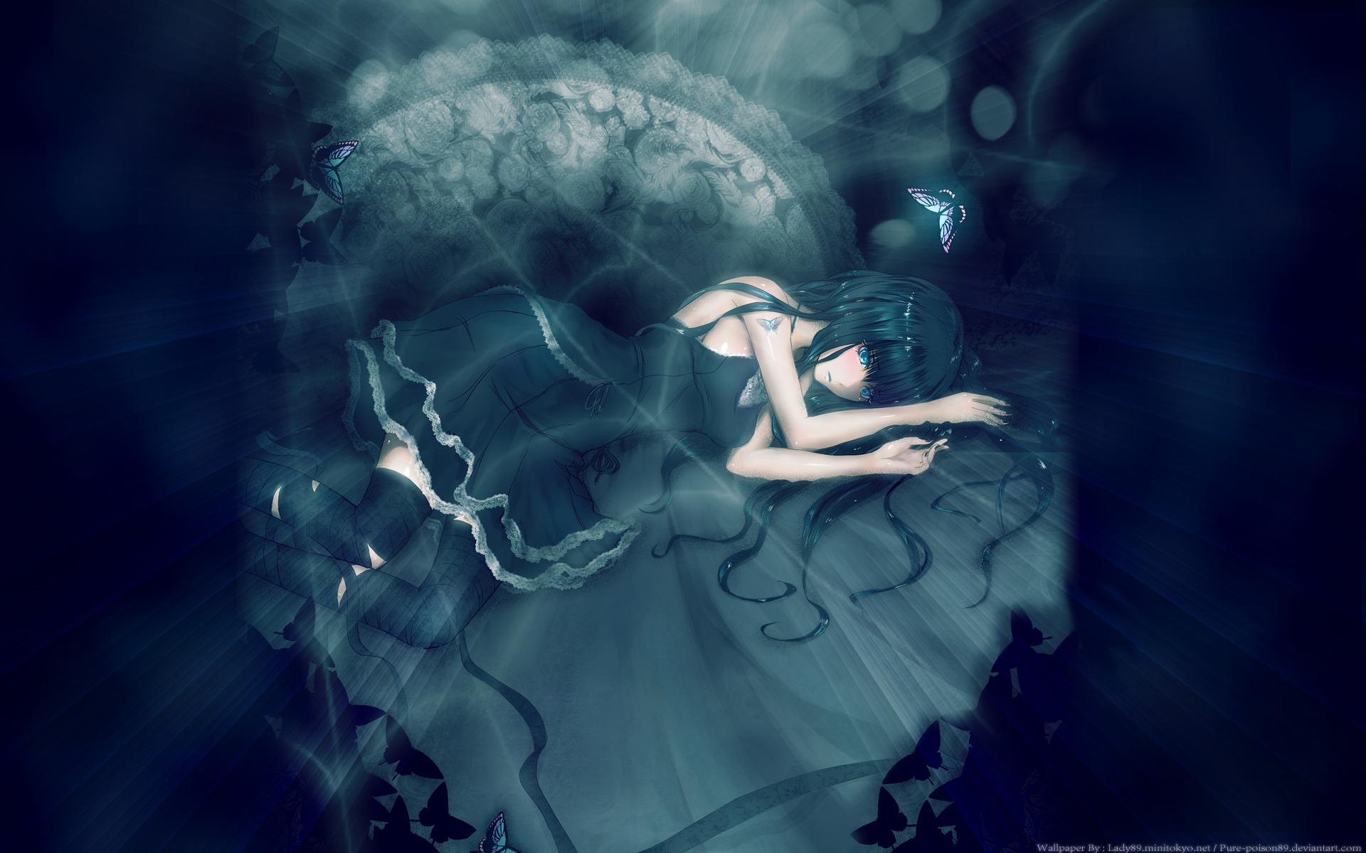 Black Rose HD Wallpaper | Background Image | 1920x1200 | ID