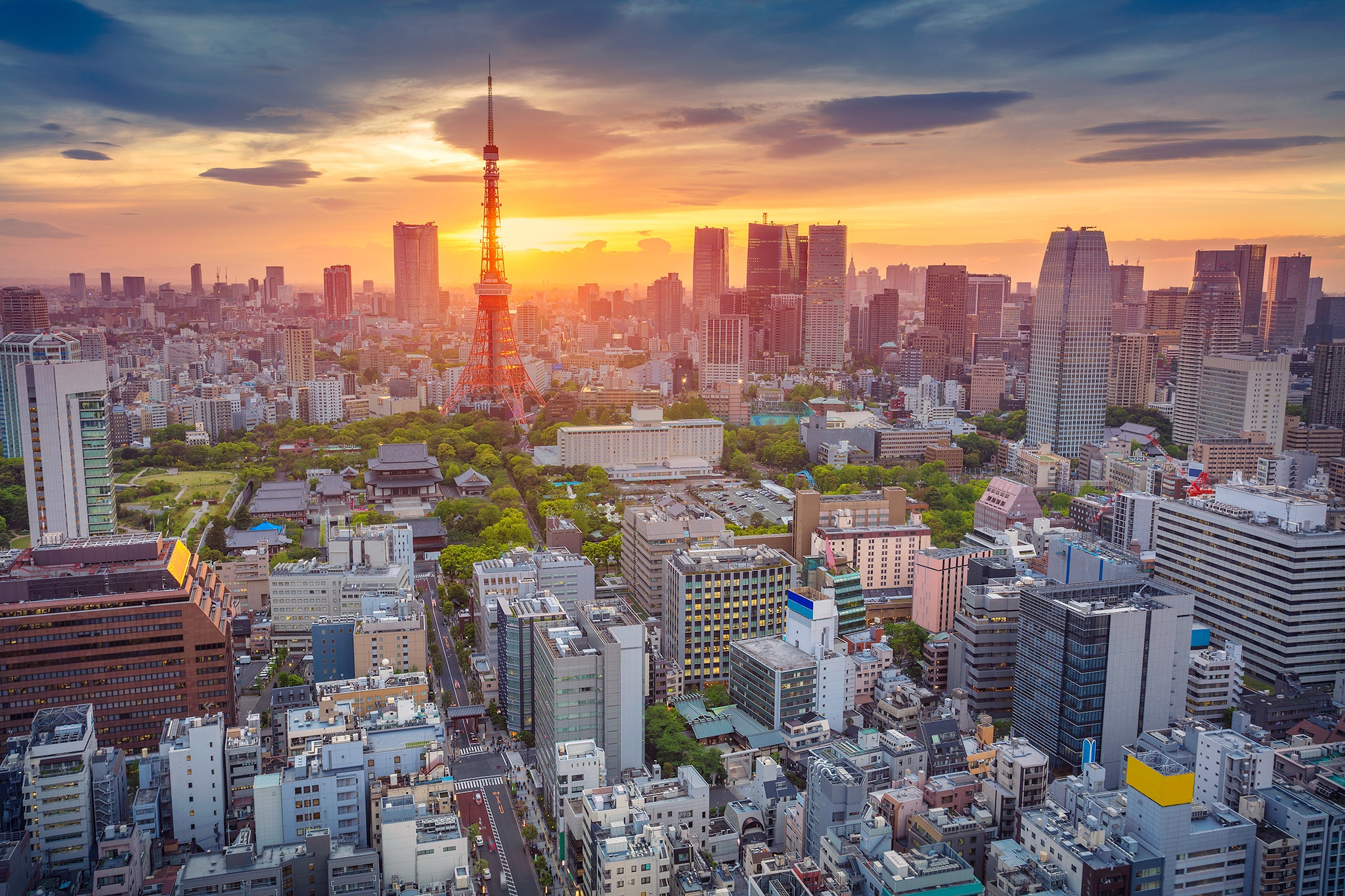 Tokyo HD Wallpaper | Background Image | 2048x1365 | ID:831673 - Wallpaper Abyss
