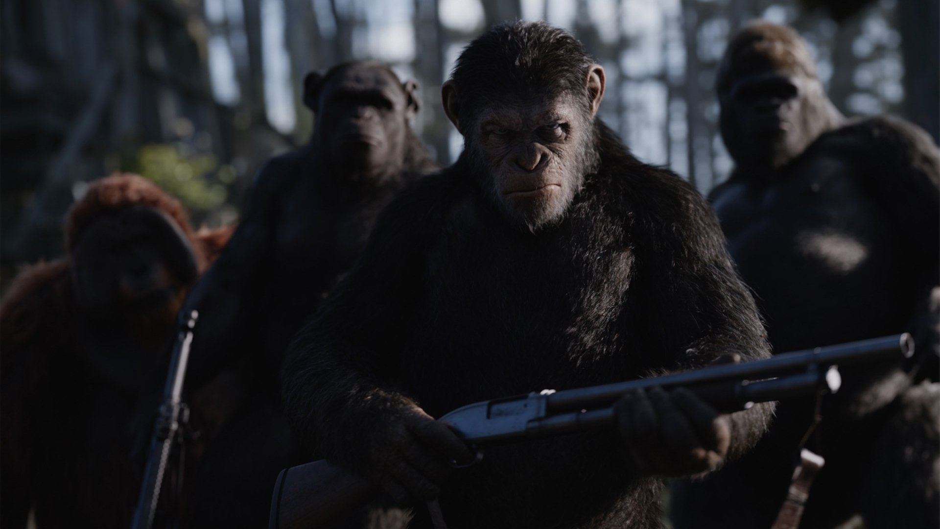 19 War For The Planet Of The Apes Hd Wallpapers Background