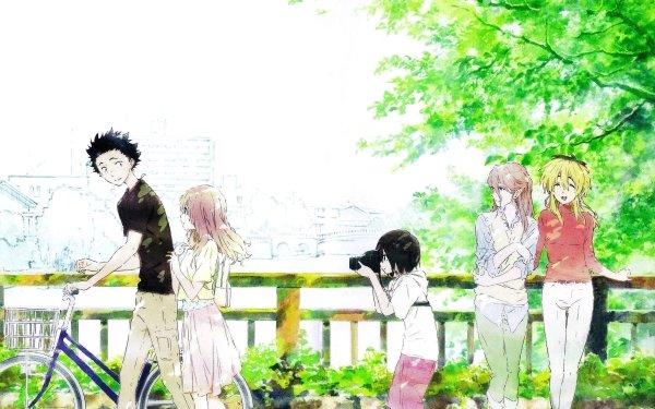Anime Koe No Katachi Shouko Nishimiya Yuzuru Nishimiya Yae Nishimiya HD Wallpaper | Background Image