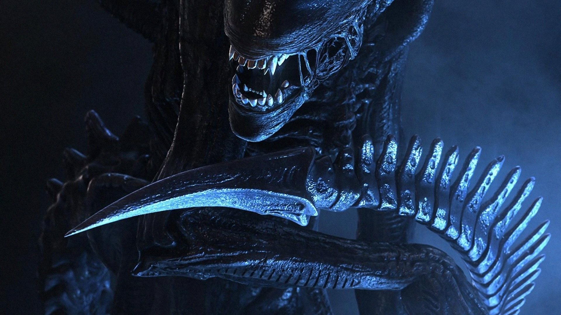 50 Xenomorph HD Wallpapers | Background Images - Wallpaper ...