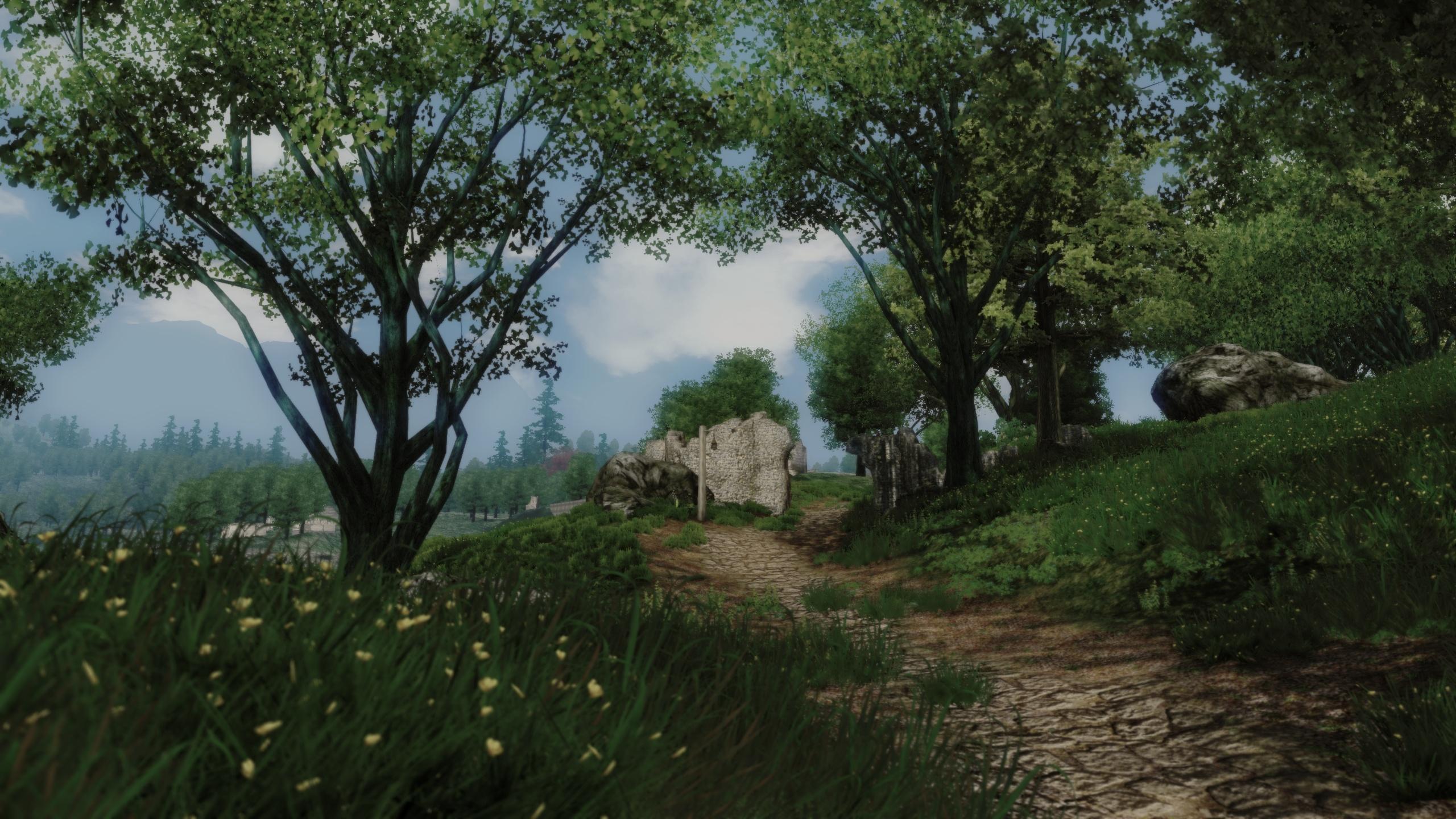 Oblivion Reloaded Hd Wallpaper Background Image 2560x1440 Id