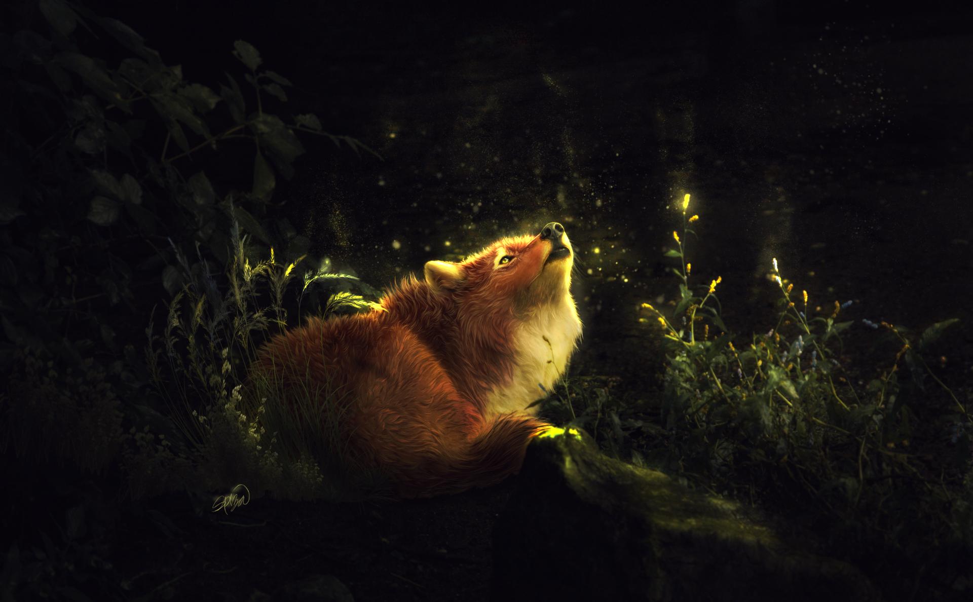Fantasy - Fox  Artistic Animal Forest Light Firefly Wallpaper