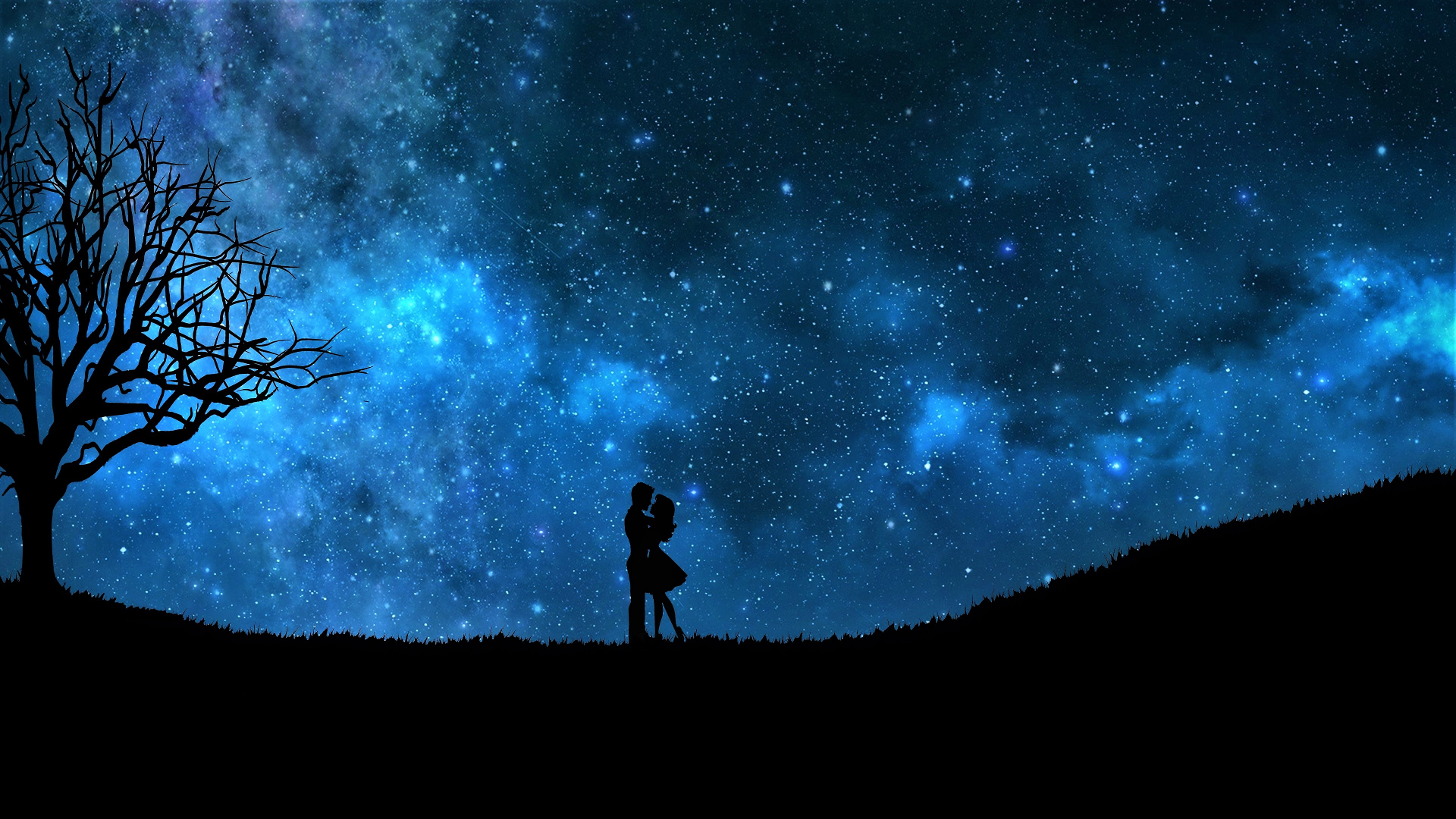 Lovers On A Starry Night Sky Hd Wallpaper Background Image