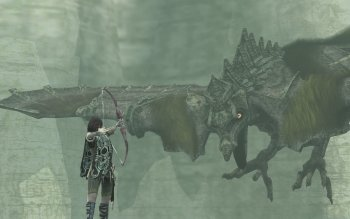Video Game - Shadow Of The Colossus Wallpapers and Backgrounds ID : 8607