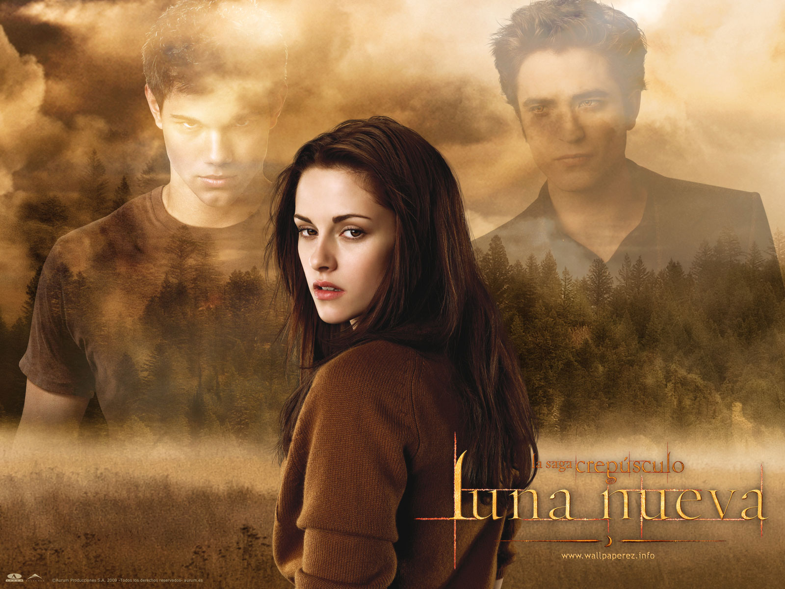 the twilight saga: new moon wallpaper and background image