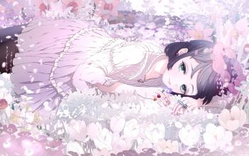 HD Wallpaper | Background ID:864221
