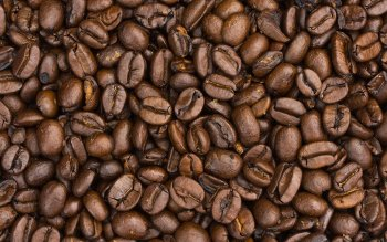 Alimento - Coffee Wallpapers and Backgrounds ID : 86787